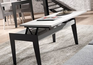 BAIX MODULS-COFFEE TABLE-1.jpg