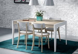 BAIX MODULS-DINING TABLE-1.jpg