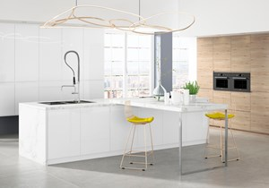 Lino Alonso-Fox-Kitchen-1.jpg
