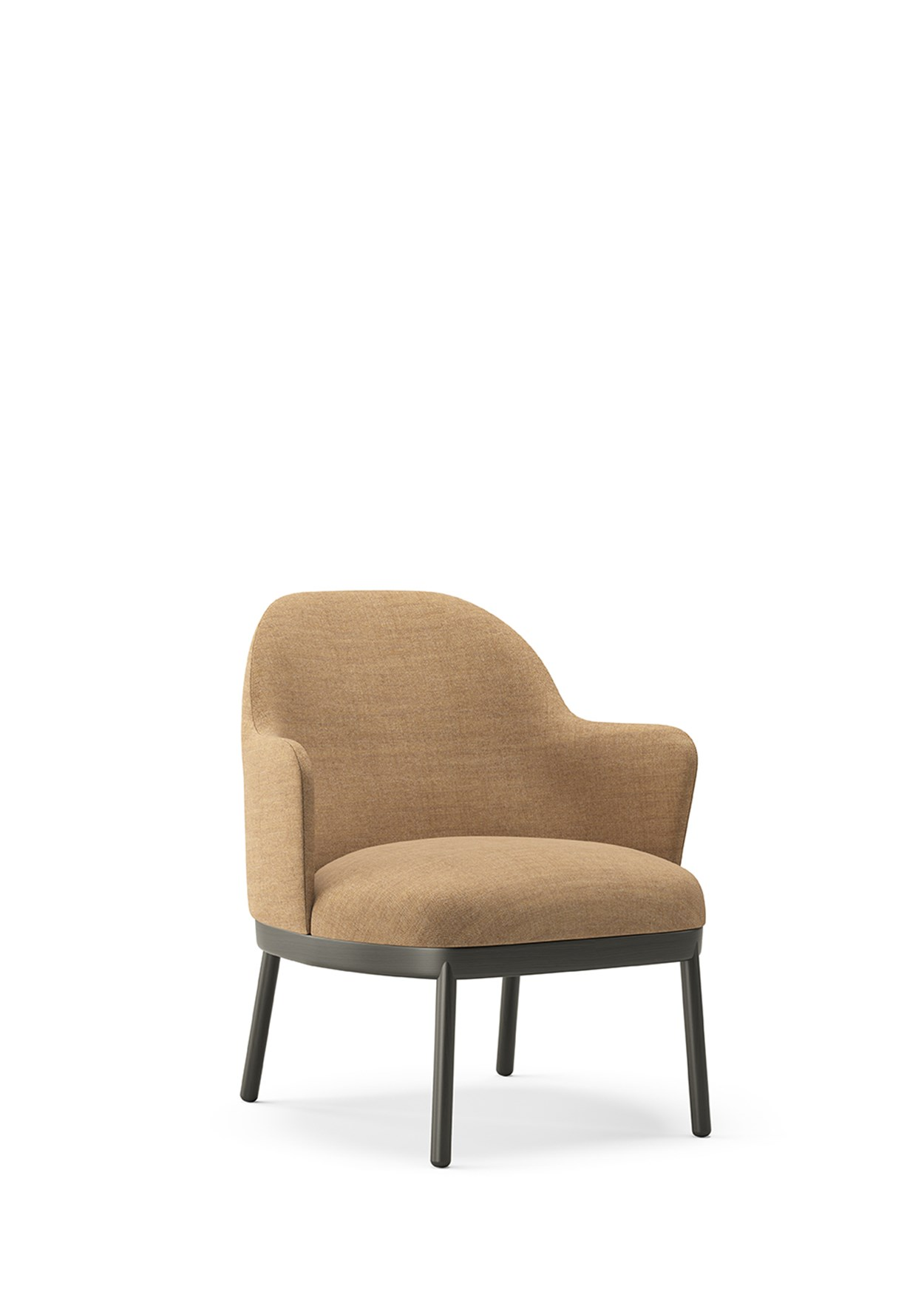 VICCARBE_ALETA Lounge Chair wooden base with arms (1).jpg