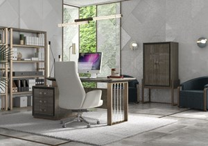 tomas-saez-empire-office-furniture.jpg