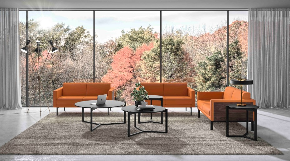 ofifran-gallery-sofas